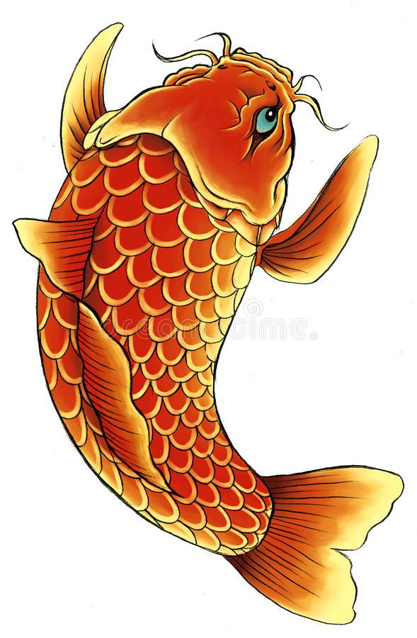 Asian Carp Stock Illustrations.
