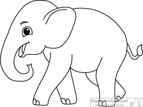 Animals : asian.