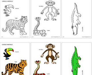 Jungle & Rainforest Animals Printables in both B&W and Color.