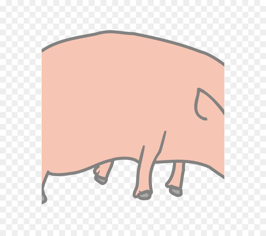 Pig Cartoon clipart.