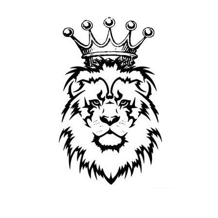 aslan resmi ile ilgili görsel sonucu.