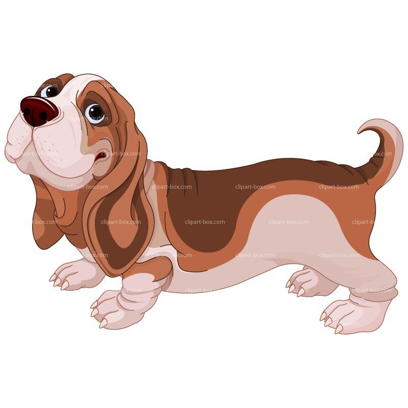CLIPART BASSET HOUND DOG.