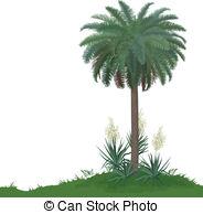 Asparagaceae Clipart and Stock Illustrations. 46 Asparagaceae.