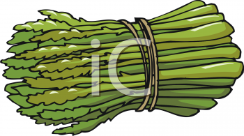 Bunch Of Asparagus Clipart Image.