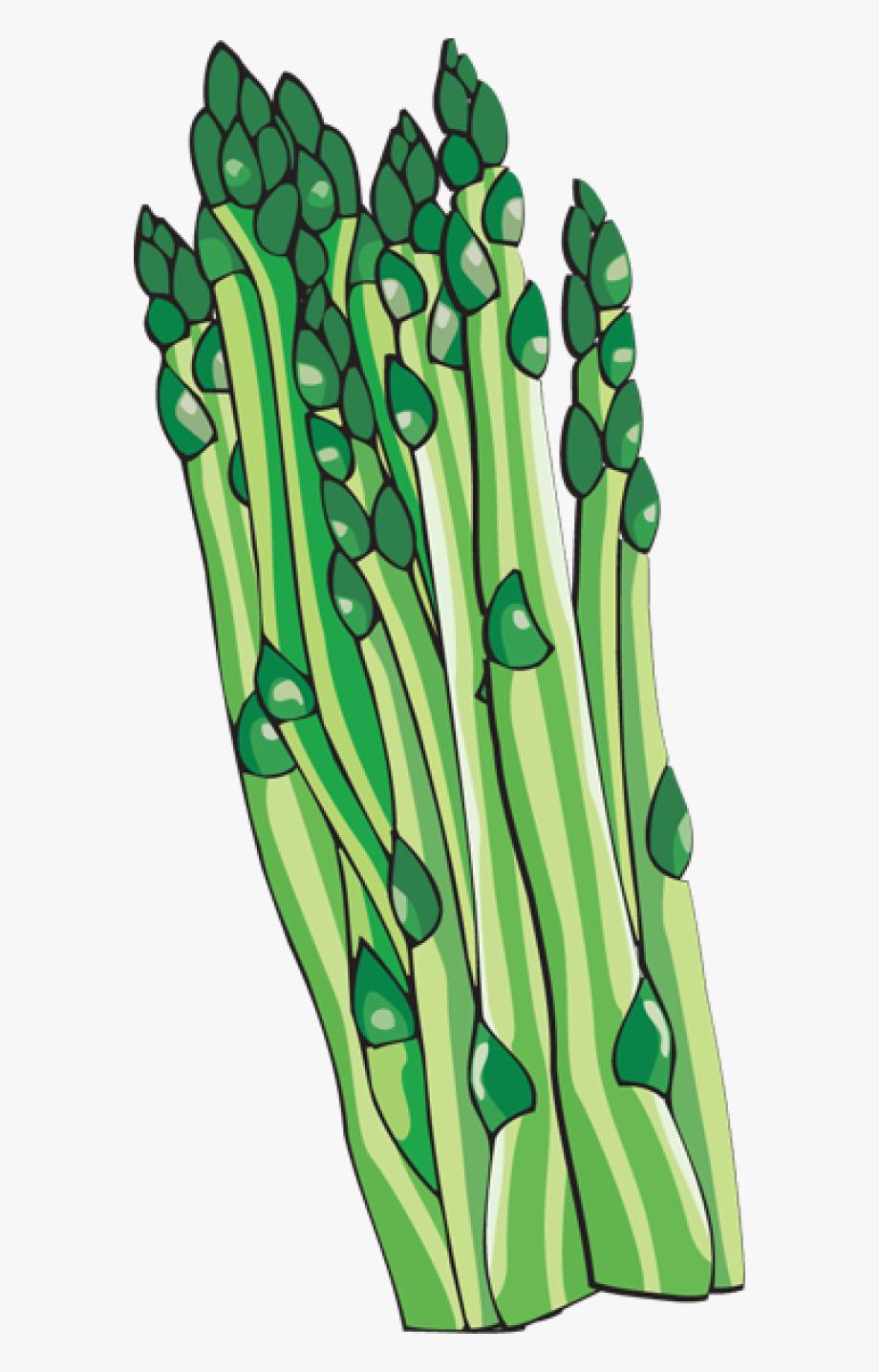 Asparagus Clipart Png , Transparent Cartoon, Free Cliparts.