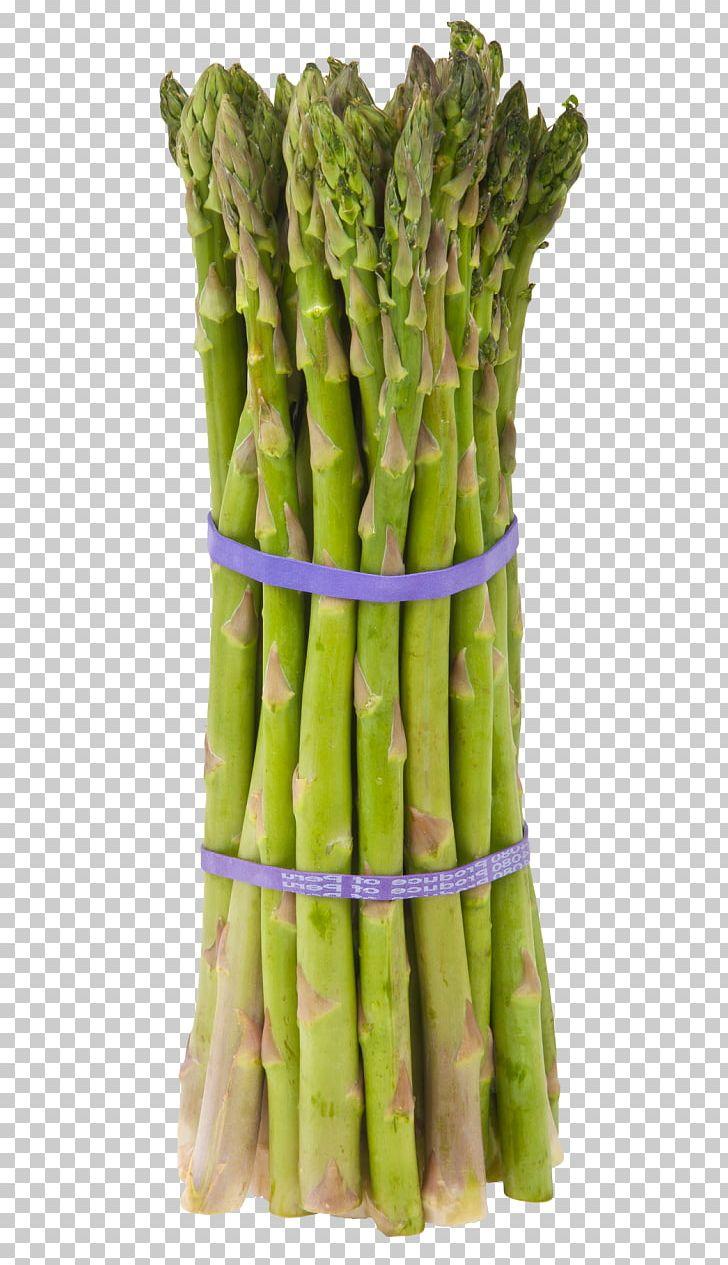 Garden Asparagus Leaf Vegetable Food PNG, Clipart, Asparagus.