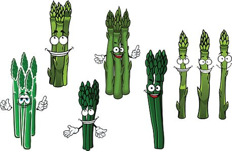 Cartoon bundles of green asparagus vegetables Clipart Image.