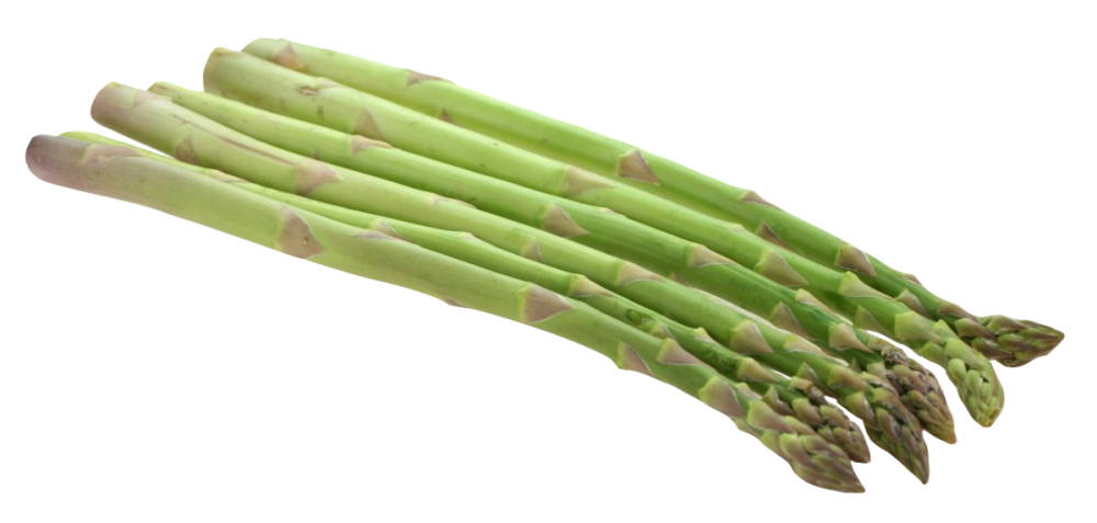 Download Asparagus PNG Clipart For Designing Use.