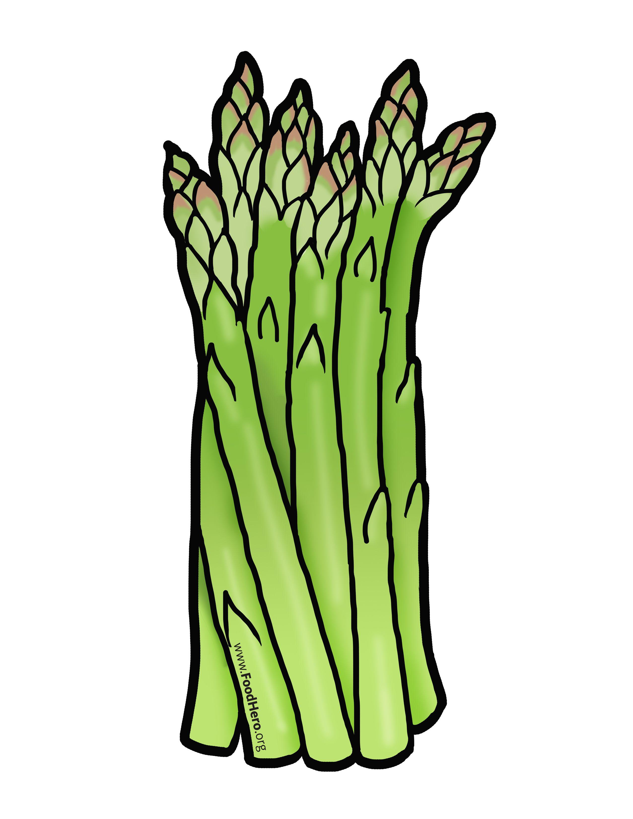 Asparagus illustration. #foodhero #bullentinboards #artwork.