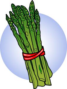 Asparagus 20clipart.