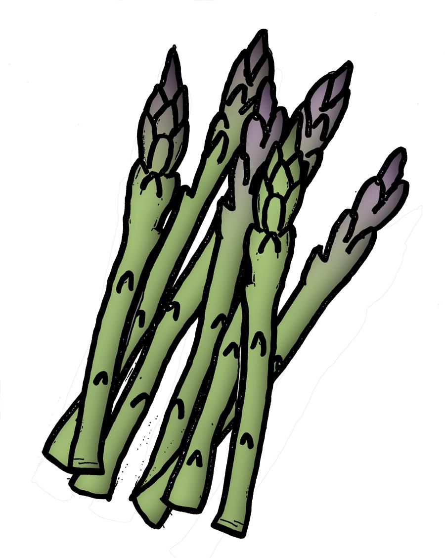 Asparagus Clipart Clipground
