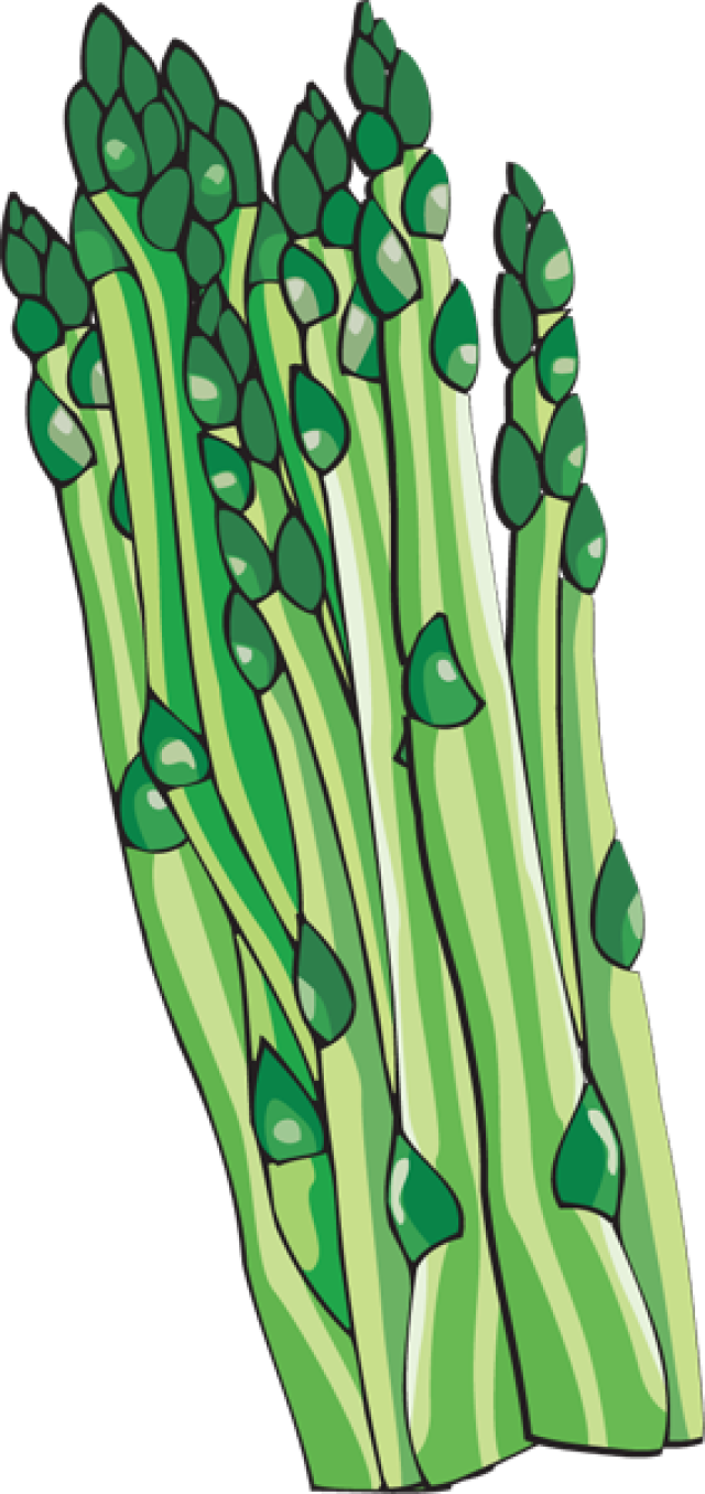 Free Asparagus Cliparts, Download Free Clip Art, Free Clip.