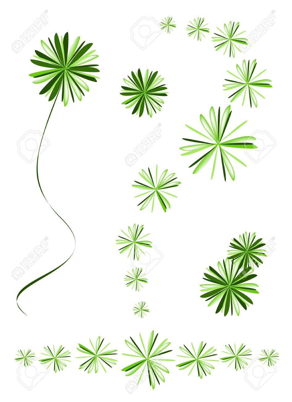 Ecological Concept, An Illustration Beautiful Green Foxtail Fern.