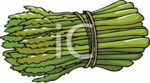 Asparagus field clipart #19