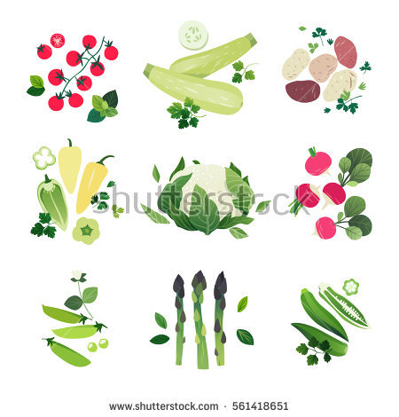 Asparagus Stock Vectors, Images & Vector Art.