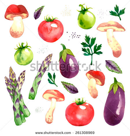 Asparagus Isolated Stock Vectors, Images & Vector Art.