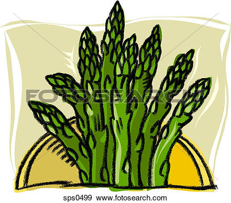 Asparagus Stock Illustrations. 168 asparagus clip art images and.