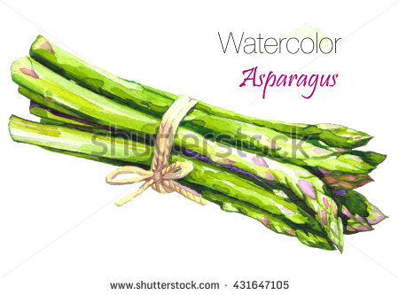 Asparagus Stock Images, Royalty.