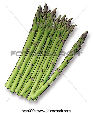 Clipart asparagus.