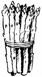 Art Image: Food Coloring Page of Asparagus Spears.