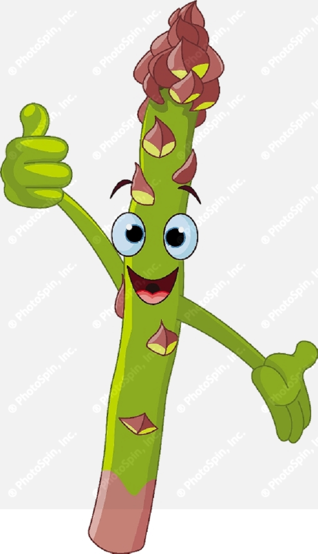 Asparagus Clipart.