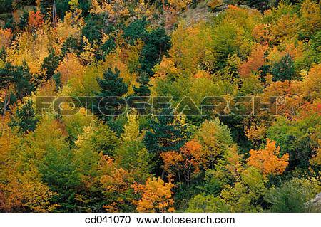 Stock Photography of Sierra de Aspe. Valle de Aisa. Huesca.