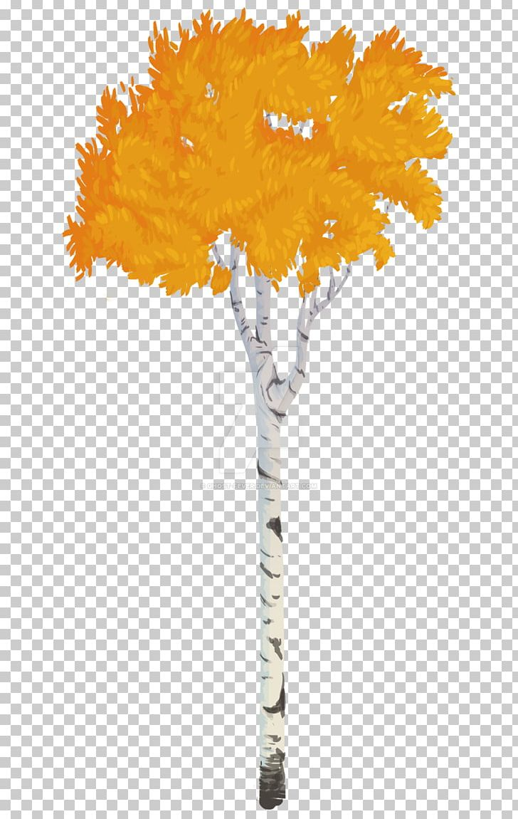 Twig Quaking Aspen Tree Birch PNG, Clipart, Aspen, Aspen.