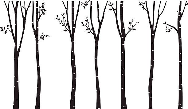 Tree Trunk Clipart Aspen.