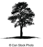 Aspen Clipart and Stock Illustrations. 1,267 Aspen vector EPS.