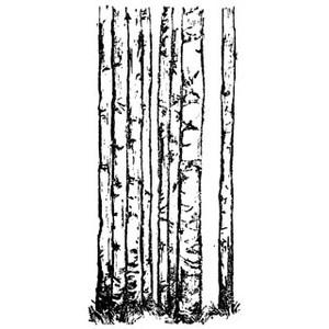 Free Aspen Cliparts, Download Free Clip Art, Free Clip Art.