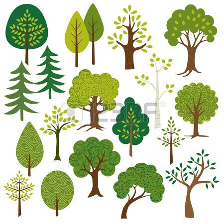 Aspen Tree Clip Art.