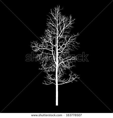 Aspen tree clipart.