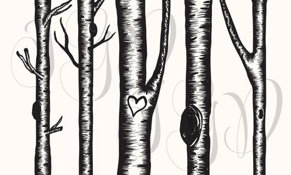 Birch Tree Digital Clip Art.