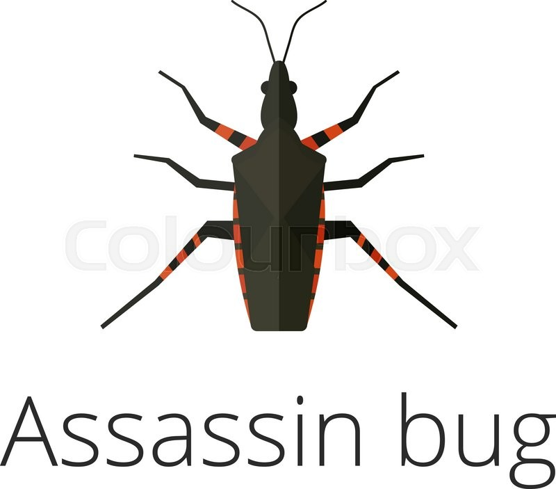 Showing post & media for Bug assassin cartoon.