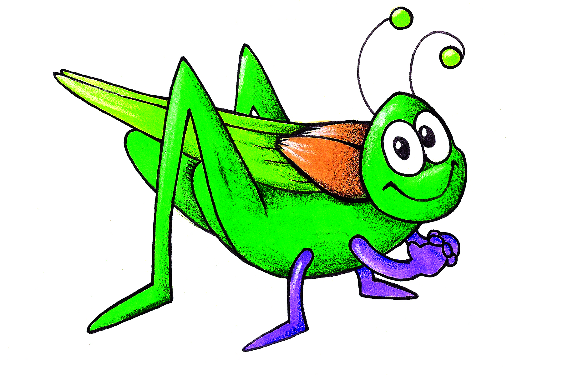 Bug clipart images.