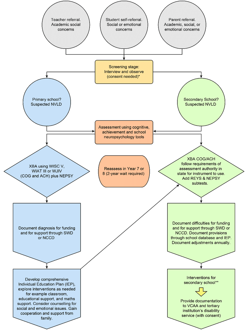 Flow Chart describing referral, assessment and intervention.