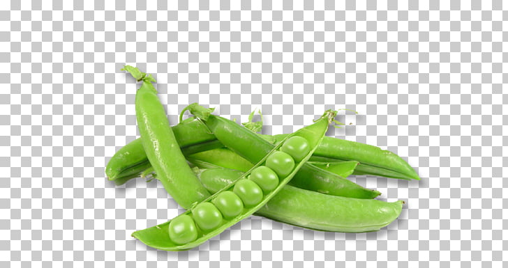 Pea Ervilha Petit Pois Vegetable Food Sowing, pea PNG.