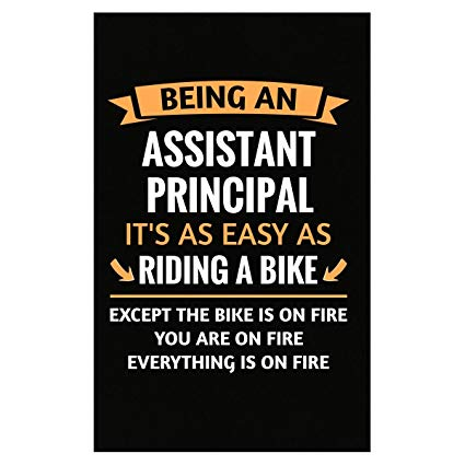 Amazon.com: Funny Assistant Principal Design Gift.