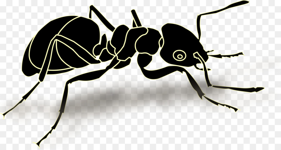 Ant Cartoon clipart.