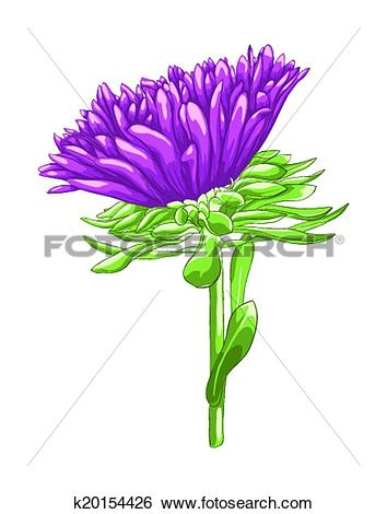 Clipart of blossom, flower, bloom, flowers, plants, aster, plant.