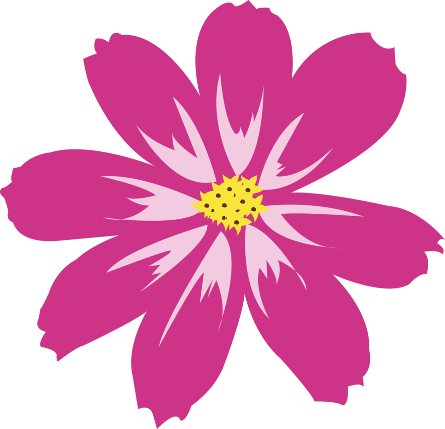 Download Aster PNG HD.