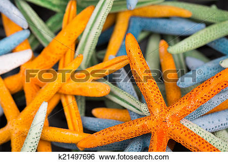 Stock Images of Starfish (Asteroidea) for sale at market.