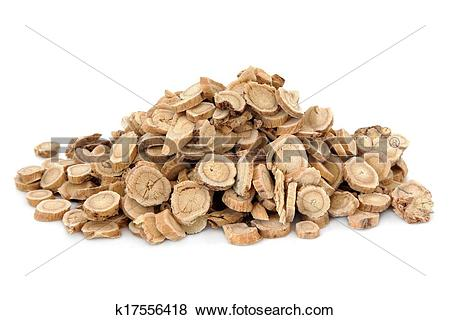 Pictures of Astragalus Root k17556418.
