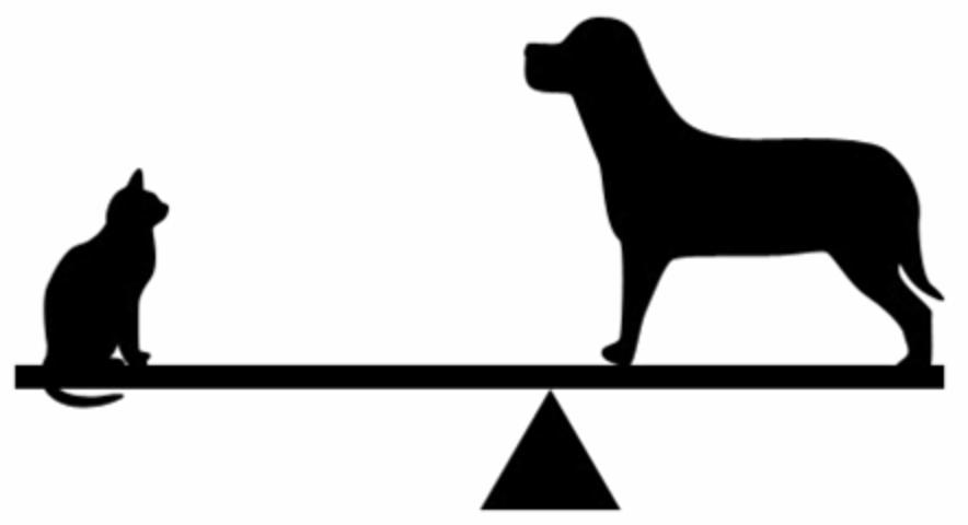 Asymmetrical Balance.