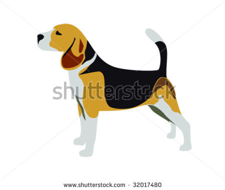of a beagle standing at attention in a vector clip art illustration.