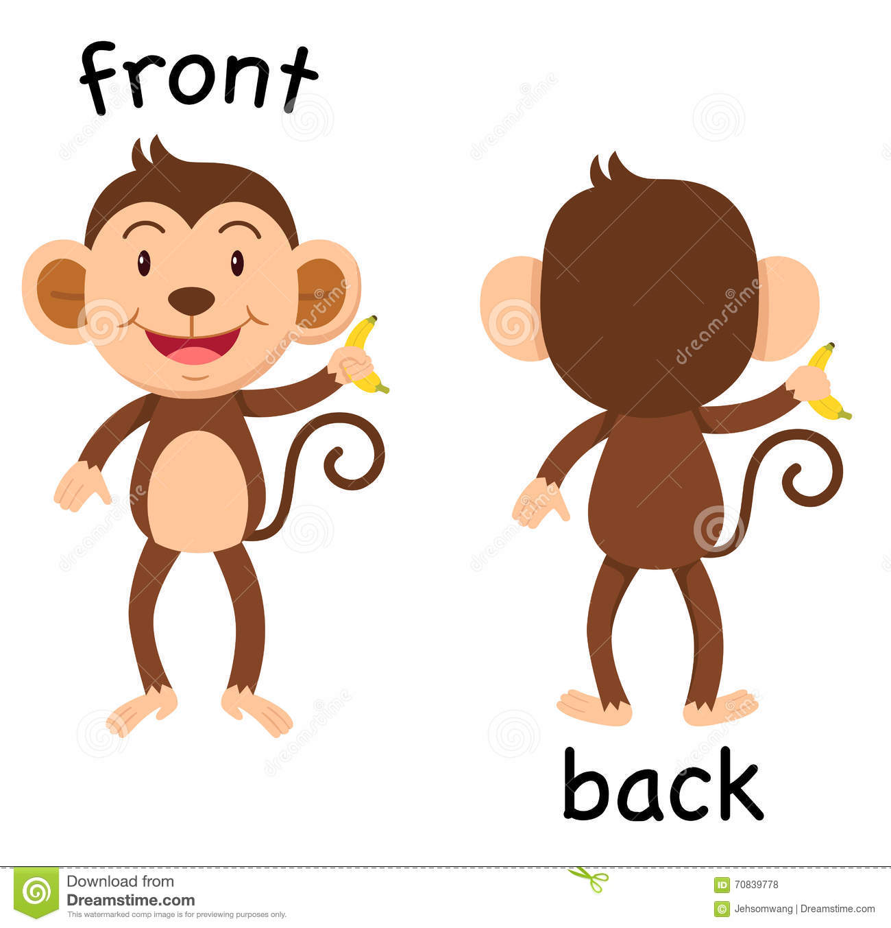 Back And Front Clipart.