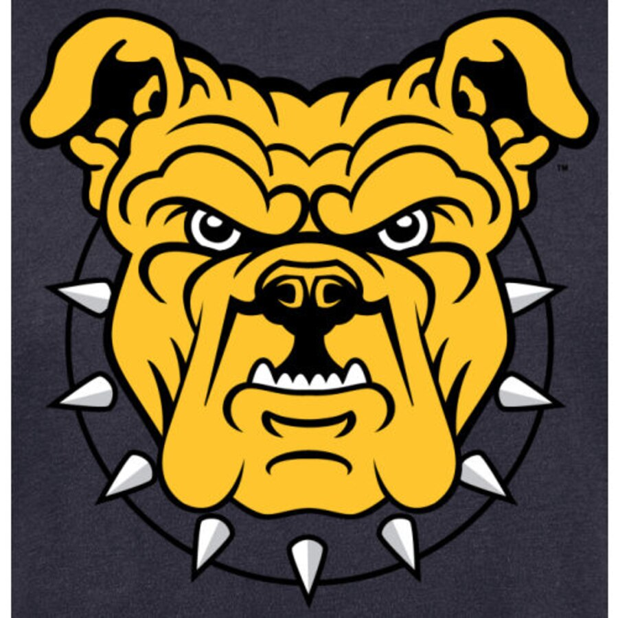 North Carolina A&T Aggies Alternate Logo T.