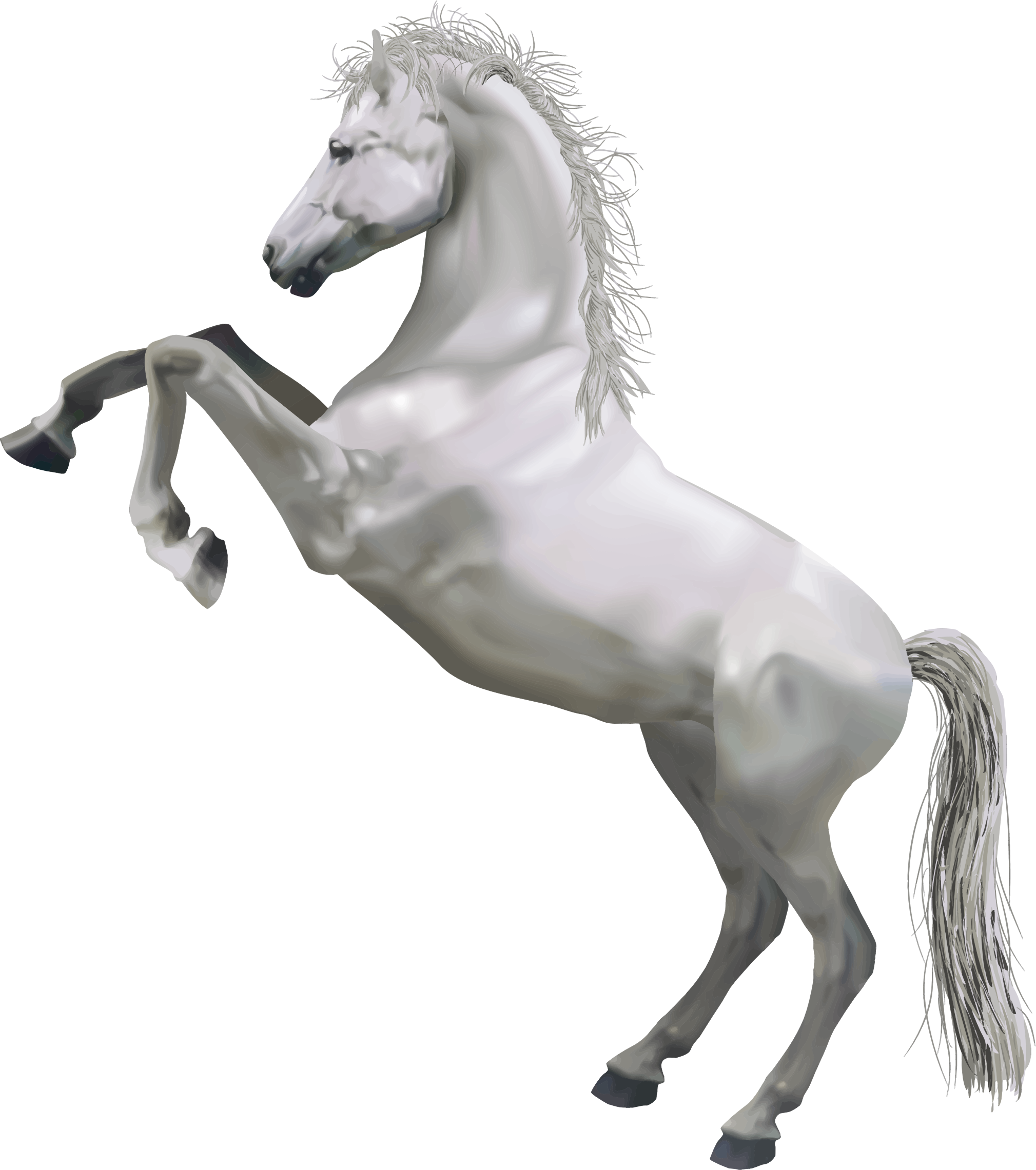Download Horse PNG Pic For Designing Projects.