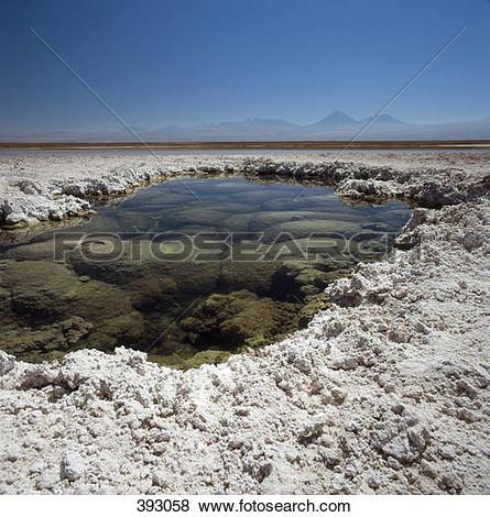 Pictures of Laguna Lejia, Atacama Desert, Chile 393058.