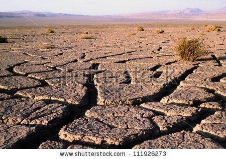 Atacama Desert Stock Photos, Royalty.